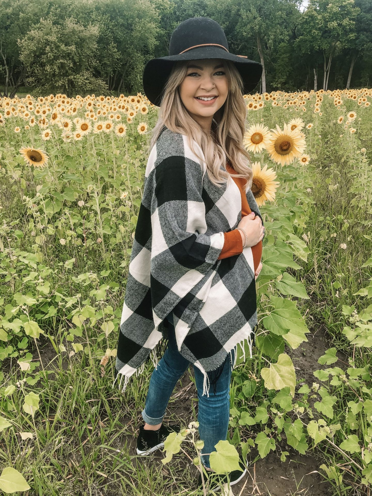 searching for sunflowers in chicago